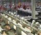 China se afianza como el mercado líder para las carnes